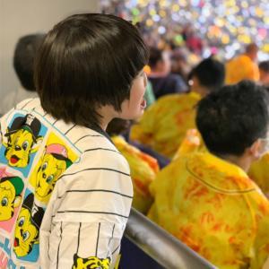 車椅子席からの野球観戦〜阪神タイガース〜