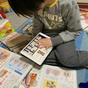 iPadを活用した自宅学習〜支援学校休校中〜