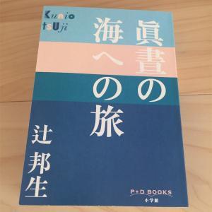 『眞晝の海への旅』辻邦生/辻さんが書くとミステリーにならない