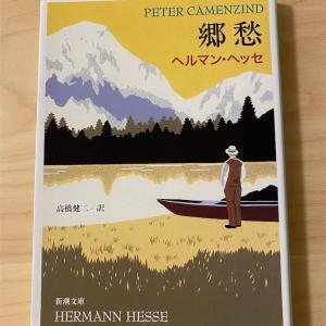 『郷愁』ヘルマン・ヘッセ/青春とお酒、そして本を読む時の気の持ちよう