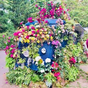 【チェルシーフラワーショー】チケット販売開始!英国最大の花の祭典