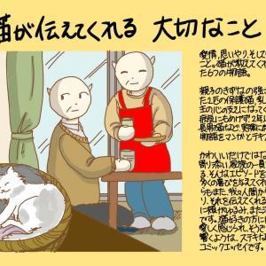 猫が伝えてくれる大切なこと