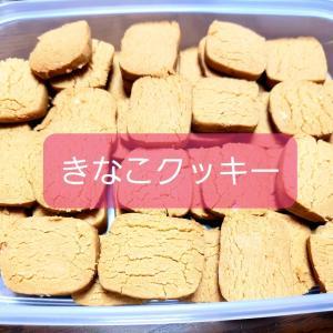 きなこクッキーとコーヒークッキー