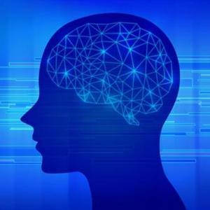 新入社員の「利き脳」はどっち?仕事を教える前に伝え方を意識したい!