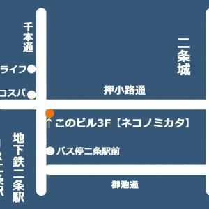 【ネコノミカタ】営業日程 2020.5.7-5.11