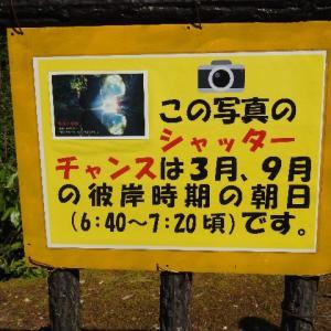 日本一周、房総編パート9