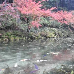 日本一周、岐阜・長野編パート36
