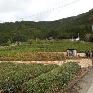日本一周、岐阜・長野編パート40