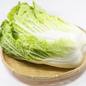 白菜の黒い点はカビでも虫でもないので食べても全然大丈夫!
