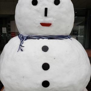 札幌さんぽ  雪まつりの氷像制作現場