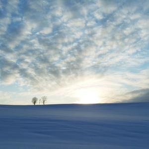 冬の美瑛町の絶景がすごすぎる!