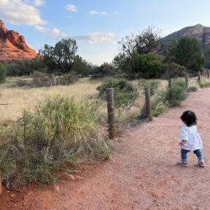 《子連れ海外》1歳2ヶ月の子供と巡るアリゾナ旅行ーセドナ・モニュメントバレー・グランドキャニオンetc.