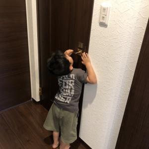 トイレに行かない3歳|あっさりオムツ卒業!成功した作戦3つ