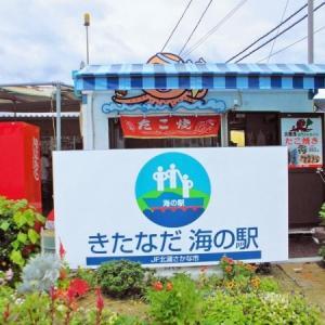 🌊海の駅で人気の高い海鮮丼