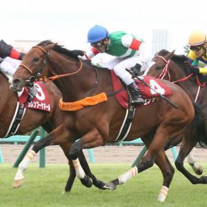 オールカマー2021 外枠有利!!夏をしっかり休んだ馬が好調!?