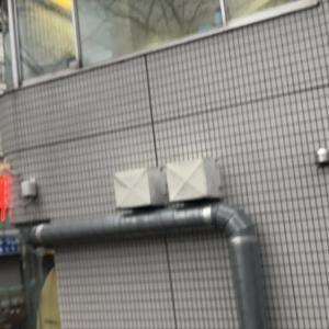 エルマートレイン東京店へ!