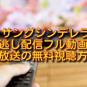 アンサングシンデレラ3話の見逃し配信フル動画&再放送の無料視聴方法