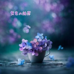 紫色の誘惑 98