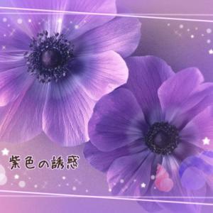 紫色の誘惑 138 (最終回)