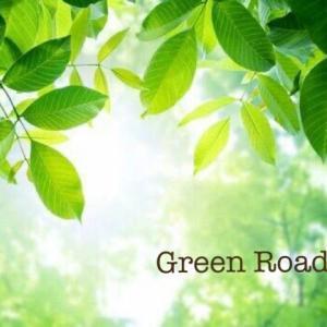GREEN ROAD 10 (R18)