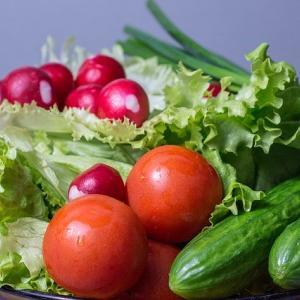 チャレンジ!お家で野菜作り〜トマトときゅうりを育てよう〜!【子どもの食育】