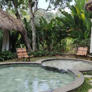 プール付きのカフェがあります