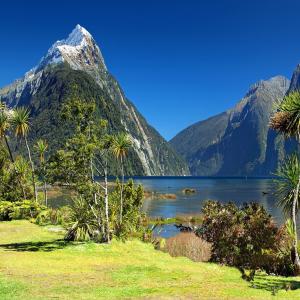 ニュージーランド旅行へ行きたい方はこちら