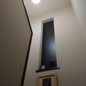 定年退職を前にして駆け込み買替(3)階段ホール照明取り換え