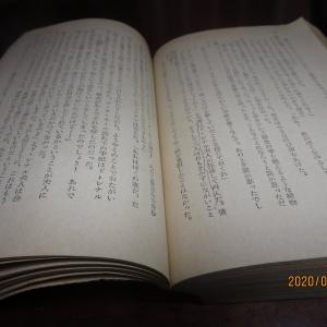 図書館が閉館中なので本が借りられず蔵書を読み返す(スタンダール「赤と黒」など)