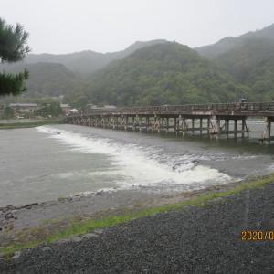 京都旅行(2020・9)の思い出~(6)観光スポットの感想と個人的な感銘度(5日目)