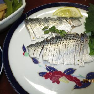 糸島・船越の波止釣り~チヌはまたしても釣れず、ヒガンフグを食う