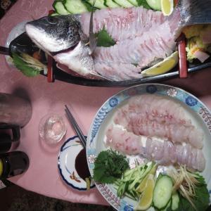 9月19日(日)福岡糸島の波止釣り~またしてもチヌが釣れ、久しぶりに舟盛にする