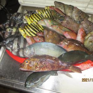 10月9日(土)福岡宗像・相島で波止釣り~カゴカキダイを初めて釣る。台風で沈んだ浮波止はいまだ2基だけ再建