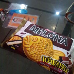 フィリピン留学@ SMEAG Day13 ディズニー好きに最高な英語教材、からの、緑のチェリーでお腹はK.O.