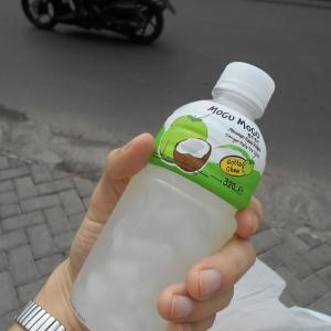 インドネシア旅行記 Day2 海外でwifi無しで人と会うのはハードモード。バスでの流血騒ぎからの、深夜特急で古都ジョグジャヘ電車旅。そしてティンティンの冒険?