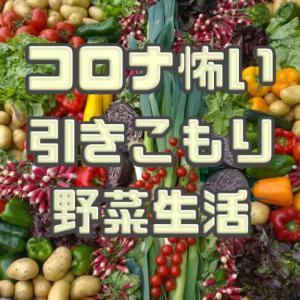 汚部屋ポンコツ主婦、ドロドロの野菜室を片付ける|コロナ対策で外食、惣菜禁止令
