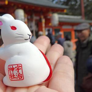 撮影の仕事で行った京都スピーディー旅行の巻