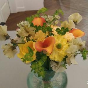 美しく綺麗な春の花