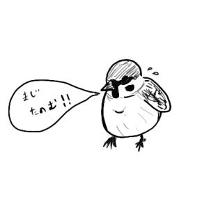 スズメの声 〜親の気持ち〜
