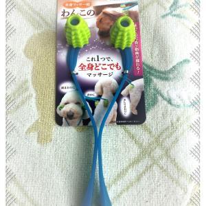 ヨーキー・犬用コロコロ~マッサージ使ってみた!気持ちいい!?