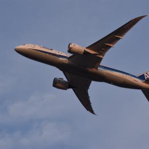 ANA国際線 特別対応手数料なしの航空券キャンセル対象を8/31のフライトまで延長