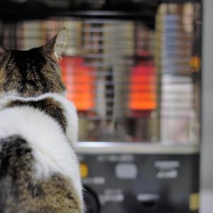 安全な暖房器具