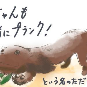 犬の多頭飼い暮らし漫画:おまけイラスト③【犬とリングフィットアドベンチャー】