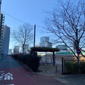 豊海から築地大橋まで一望!勝どき五丁目緑地の工事が完了していたので見てまいりました