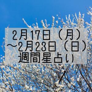 2月17日(月)~2月23日(月)の今週の星占い