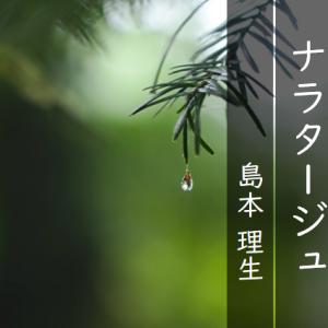 若さゆえの名作。【ナラタージュ】島本理生