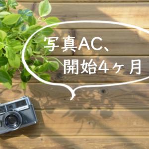 【ストックフォト】写真AC、4ヶ月目の記録