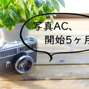 【ストックフォト】写真AC、5ヶ月目の記録