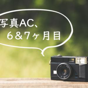 【ストックフォト】写真AC、6・7ヶ月目の記録
