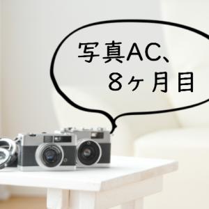 【ストックフォト】写真AC、8ヶ月目の記録